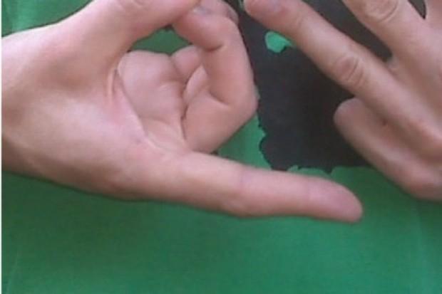 Badania nad wirtualnym tłumaczem języka migowego