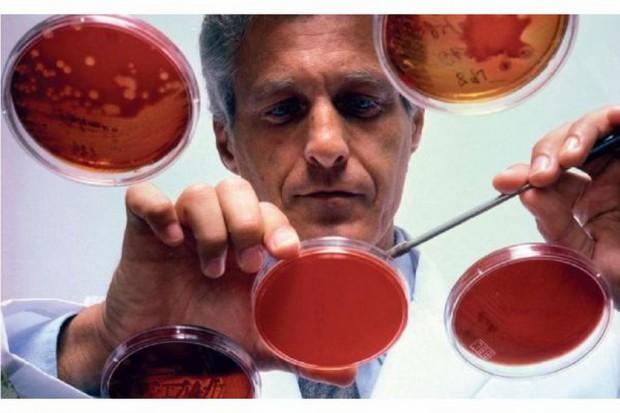 Profilaktyka najczęstszych zakażeń krwiopochodnych u pracowników ochrony zdrowia
