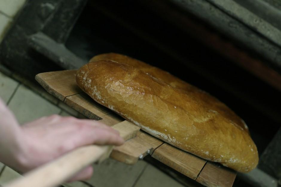 Zdrowy chleb - prosto z laboratorium?
