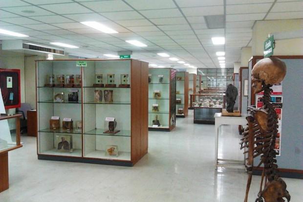 W najstarszym tajlandzkim szpitalu urządzono bardzo osobliwe muzeum medycyny