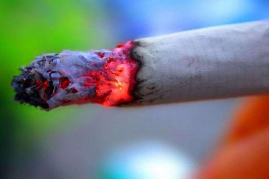 Zieloni: próby osłabienia dyrektywy tytoniowej efektem lobbingu