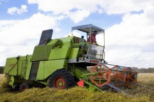Rząd zajmie się składkami zdrowotnymi rolników