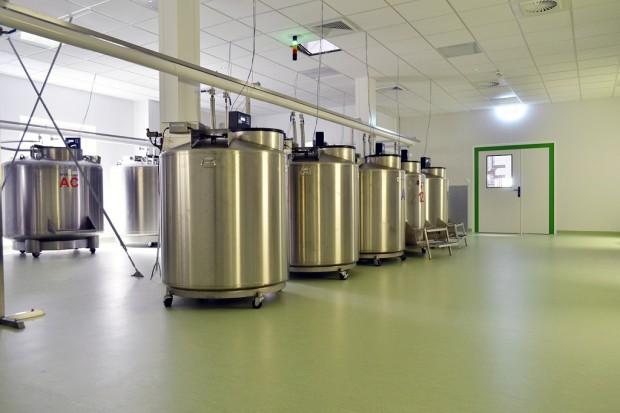 Warszawa: powstało laboratorium preparowania krwi pępowinowej