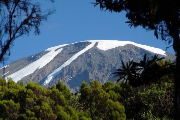 """""""Szpik na Szczyt"""", czyli wyprawa na Kilimandżaro"""