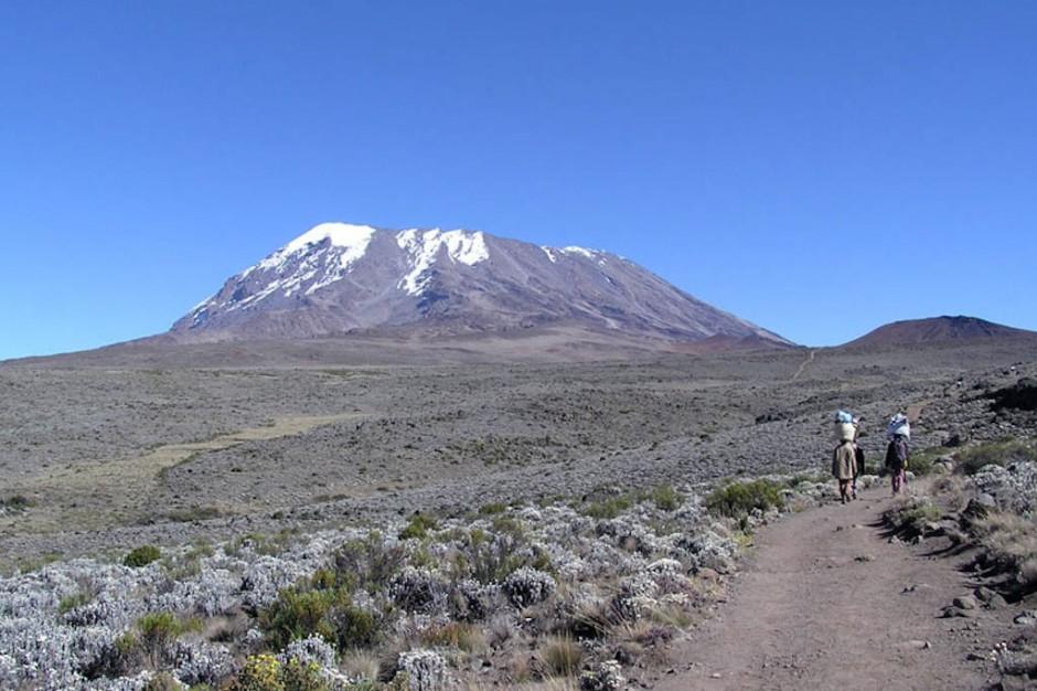 """Uczestnicy wyprawy """"Szpik na Szczyt"""" zdobyli Kilimandżaro"""
