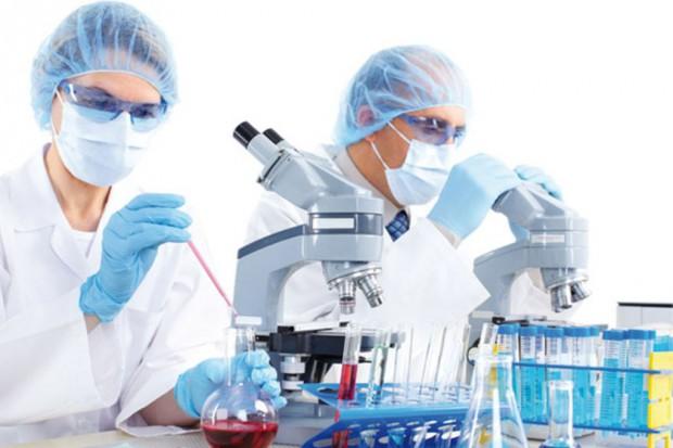 Chemicy z UJ opracowali nowatorski antybakteryjny materiał
