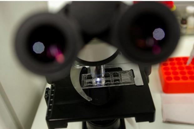 GW o komercyjnych laboratoriach: raka szybko przepowiem