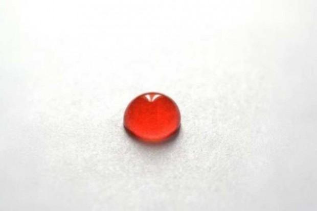 Badania: czy młoda krew może być cudowny lekiem na starzenie?