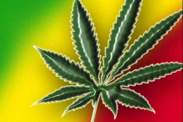 USA: bilans po pół roku od legalizacji marihuany w Kolorado