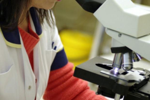 Lublin: naukowcy pozyskali substancje lecznicze z dżdżownic
