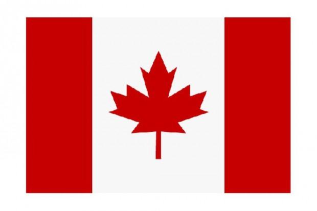 Kanada: mężczyzna z podejrzeniem wirusa Ebola trafił do szpitala