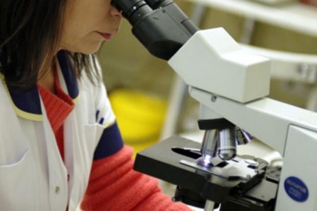 Ekspert: nowotworowe komórki macierzyste głównym powodem przerzutów