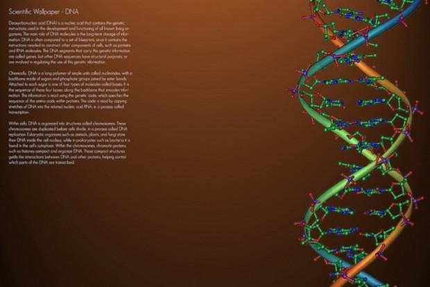 Warszawa: warsztaty nt. technik analizy całego genomu w badaniach nowotworów