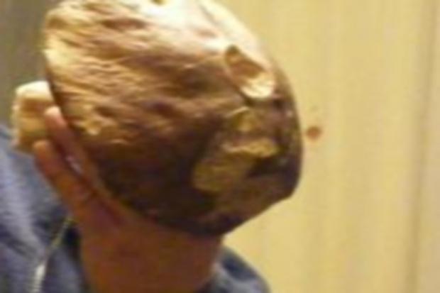 Apteka w grzybowym kapeluszu