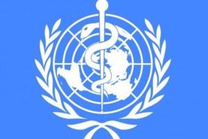 Jemen: największa epidemia cholery na świecie