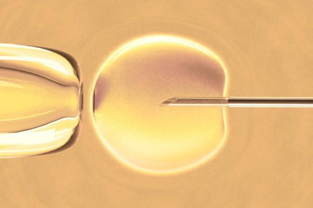 MZ rozdysponowało pieniądze na in vitro