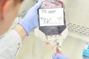 MZ nie planuje finansowania przechowywania krwi pępowinowej