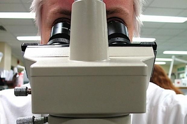 Odkryli wirusa, który obniża sprawność mózgu