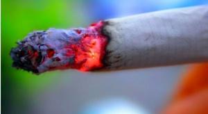 WHO: palenie tytoniu zabija rocznie 4 mln osób