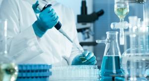 W laboratoriach powstają ludzko-zwierzęce chimery