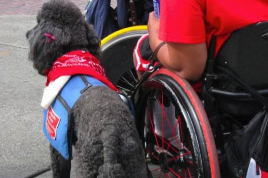 Kraków: wkrótce wyrok ws. niewidomej pacjentki z psem asystującym