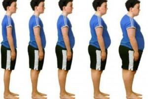 Dziecięca otyłość związana jest bardziej z pracą mózgu, niż z dostępnością pokarmów