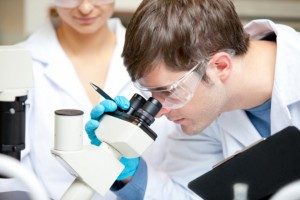 Gowin o modelu kształcenia doktorantów, rozwoju uczelni i grantach