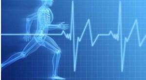 Fizjolodzy: w ćwiczeniach mięśni wystarczą małe ciężary