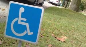 Wicemnister rodziny m.in. o aktywizacji niepełnosprawnych