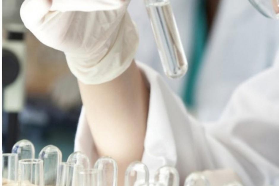 Badania: pomarańczowy barwnik w rabarbarze sposobem na raka?