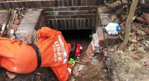 Włochy: co najmniej 50 zabitych wskutek silnego trzęsienia ziemi; szpitale nie działają