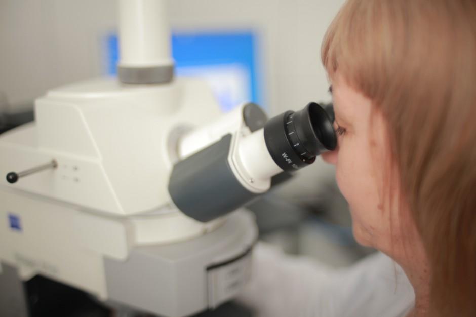 Krakowscy naukowcy opracowali nową metodę diagnostyki uszkodzenia nerek