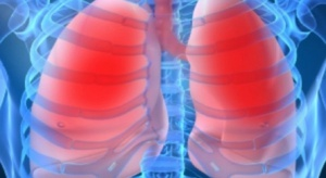 Odkryto zaskakującą rolę płuc w wytwarzaniu i krzepnięciu krwi