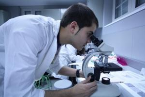 Hormonalna terapia zastępcza zmienia aktywność bakterii w jelitach