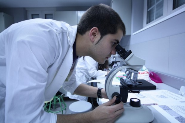 Polski licealista opracował nowy sposób wytwarzania płuca na chipie