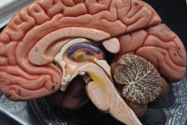 Specjaliści: środek owadobójczy przyczynił się do rozwoju choroby Parkinsona