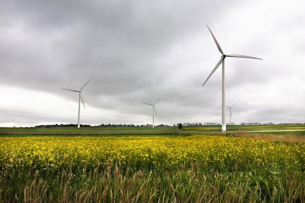 Badania: odgłosy turbin wiatrowych są szkodliwe dla zdrowia?