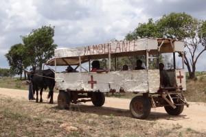 Zimbabwe: mieszkańcom zagraża głód, ochrona zdrowia w ruinie, brakuje leków