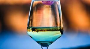 Zmiany w mózgu przyczyną uzależnienia od alkoholu?