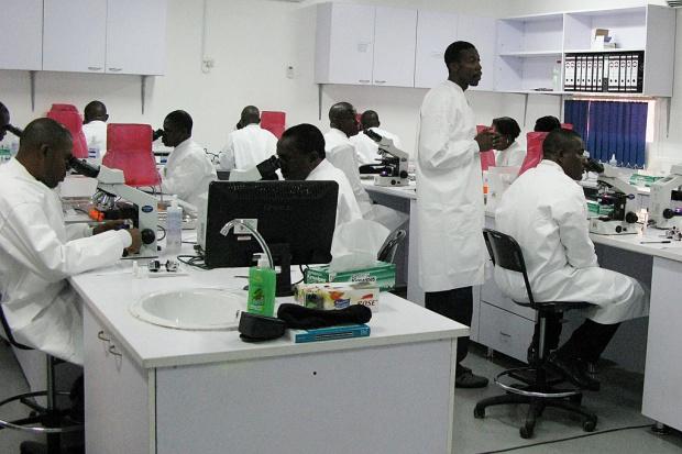 W. Brytania: miliony dolarów na program walki z malarią