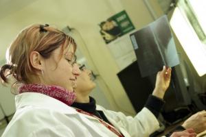 Lubuskie: będzie program profilaktyki nowotworów głowy