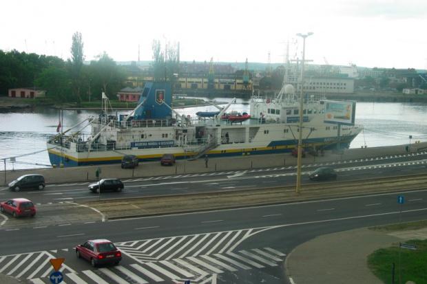 Szczecin: wyznaczony został obszar zagrożony wścieklizną