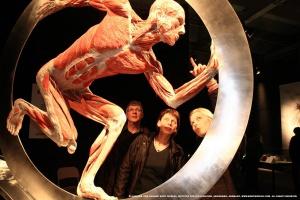 Katowice: plastry ciała i narządy w centrum handlowym