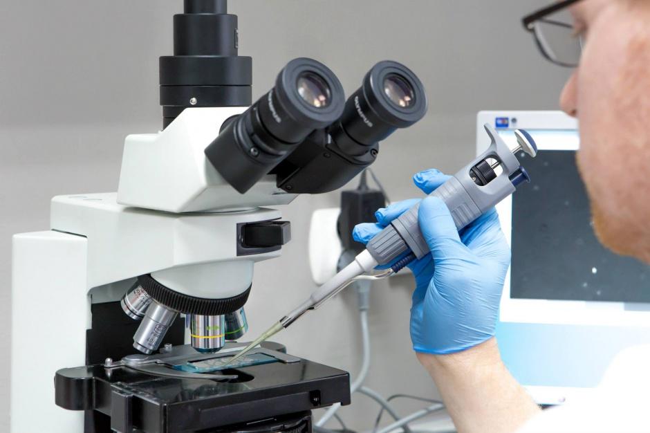 Program in vitro na Mazowszu - skorzysta około 440 par