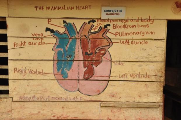 Polscy lekarze będą konsultować telemedycznie pacjentów z Tanzanii