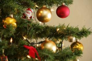 Ekolog o świątecznych dekoracjach: zachowajmy umiar. Dla środowiska i dla zdrowia