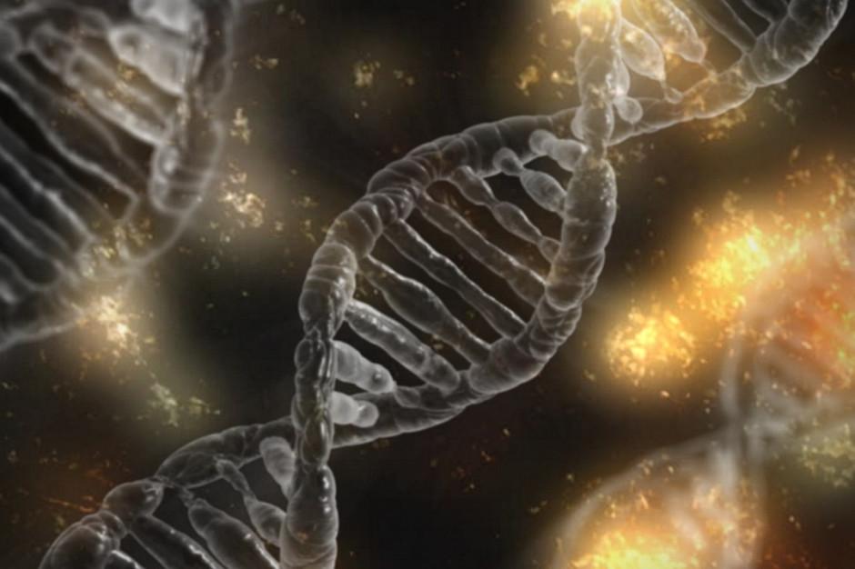 DNA decyduje o zdrowiu w niewielkim stopniu, zazwyczaj w kilku procentach