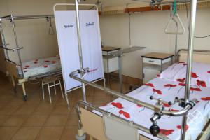 Małopolskie: od początku roku zanotowano 159 przypadków świńskiej grypy