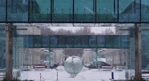 Grant ponad 3 mln zł na badania dot. lekoodporności bakterii pałeczki ropy błękitnej