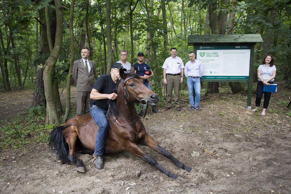 UCK: innowacyjny program telerehabilitacji połączonej z jazdą konną